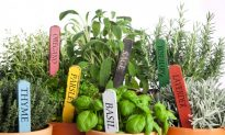 Spring Trimmings to Make Your Kitchen a Vibrant and Welcoming Space