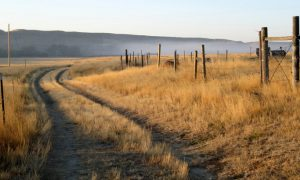 Ghosts of the American West: Montana