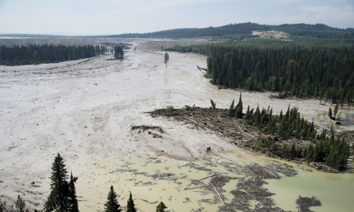 An aerial view shows toxic waste from the tailings pond breach at the Mount Polley Mine spilling into Hazeltine Creek on Aug. 5, 2014. (The Canadian Press/Jonathan Hayward)