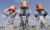 Ice Buckets: Not the Cure for ALS