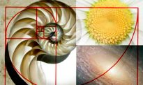 The Golden Ratio—A Sacred Number That Links the Past to the Present
