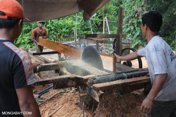 Illegal logging operation in Indonesian Borneo. Photo by: Rhett A. Butler.
