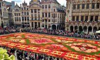 Flower Power: Seeing the Flower Carpet in Brussels