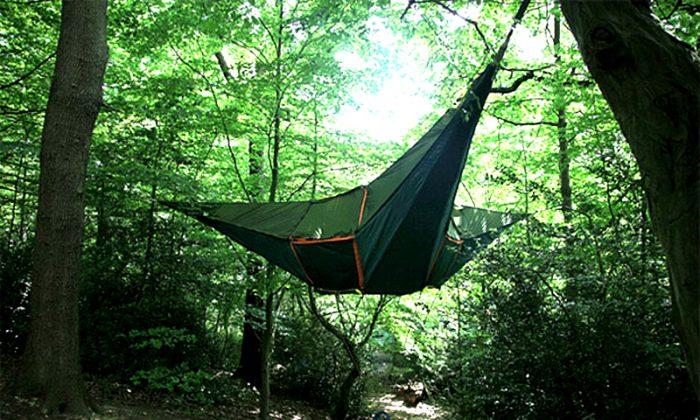 Sleeping on the trees