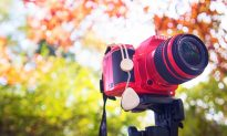 MaxStone Simplifies Camera Experience for Everybody