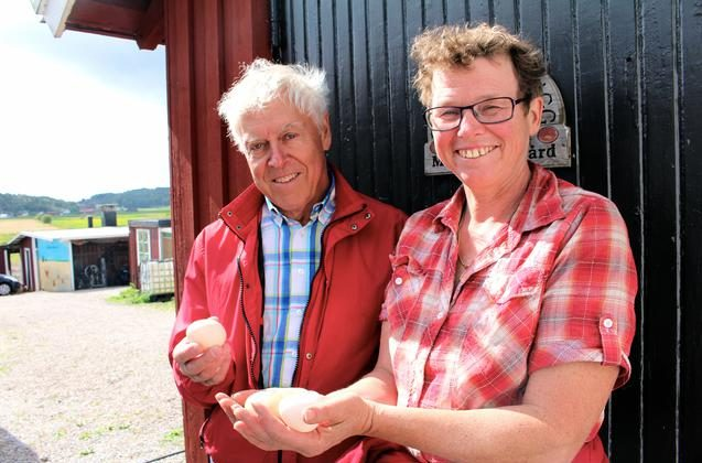 "Odd Lindahl and Maria Karlsson, holding ""mussel eggs"" at Mällby farm on the Island of Orust at the Swedish west coast, August 21, 2014."