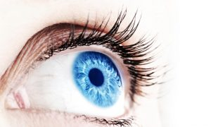 The Man Who Grew Eyes: Latest in Stem-Cell Research
