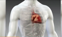 New Drug Could Reduce Cardiovascular Deaths (Video)