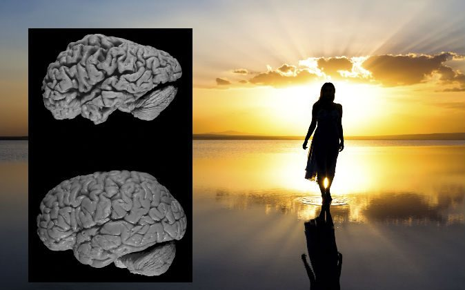 A brain affected by Alzheimer's disease (above) and a healthy brain (below).(Hersenbank/Wikimedia Commons; image of a woman walking on the beach by  BERKO85/iStock/Thinkstock)
