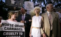 NYFW Opening Pushed Back By Horse-Drawn Carriage Protest