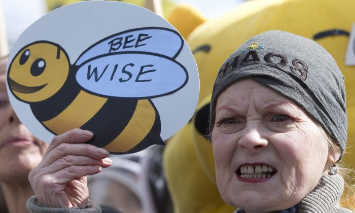 British fashion designer Vivienne Westwood holds a sign supporting bee-keepers during a demonstration in London ahead of the European Commission's vote on a proposal to ban bee-harming neonicotinoid pesticides, April, 26, 2013. (AP Photo/Alastair Grant)