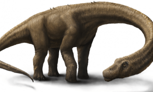 Newly Discovered Dinosaur, Dreadnoughtus, Patrolled Argentina 77 Million Years Ago