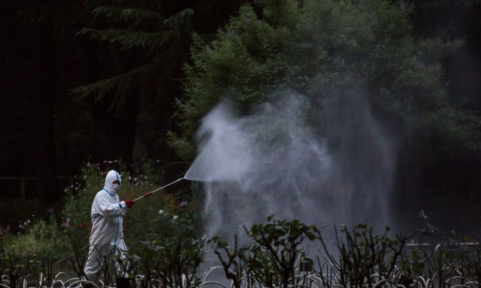 A workman sprays pesticide in Tokyo, Japan, on Aug. 28, 2014. The number of dengue fever cases has reached 1755 in southern China's Guangdong Province by Sept. 9, exceeding the total annual number for previous years. (Chris McGrath/Getty Images)