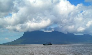 Getting to Bako National Park in Borneo