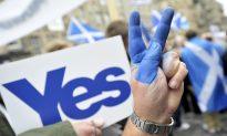Scotland Referendum and NZ Election Previews