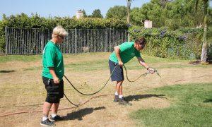 California Residents Seek Drought-Friendly Lawns