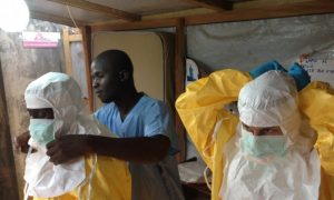 Genetic Evolution: How the Ebola Virus Changes and Adapts