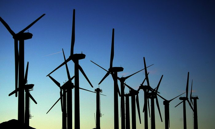 Wind turbines near Palm Springs, Calif., on May 13, 2008. (David McNew/Getty Images)