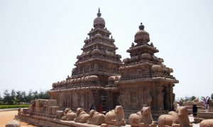 Mamallapuram Stone Carvings and Most Delicious Drinks in India