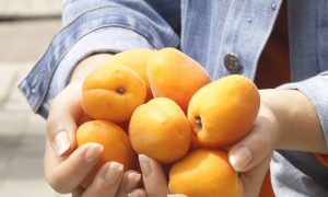 Study Links Potassium to Fewer Strokes in Women