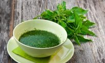 8 Reasons to Add Stinging Nettles to Your Healing Plan
