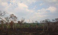 Anti-Mining Activist Shot Dead in Guatemala