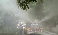 Over 10,000 Are Infected As Dengue Fever Spreads in Southern China