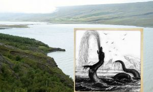 Icelandic Government Commission Announces Legendary Sea Monster Exists (+ Sighting Video)