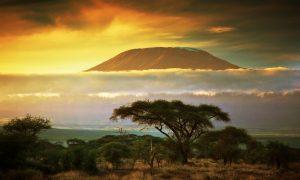 Klein's Camp: Tanzania, And Beyond