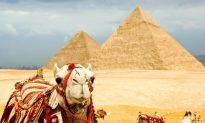 Egypt on a Budget