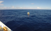 Man in Inflatable Bubble Tries Running to Bermuda (Video)