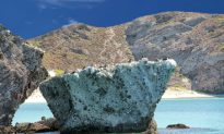 Top Reasons to Visit Cabo San Lucas, Mexico