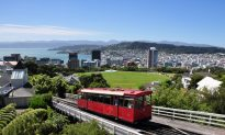 Free Attractions in Wellington New Zealand
