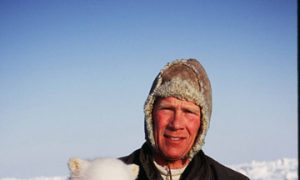 Polar Bears Threatened in Arctic By Greenhouse Gases