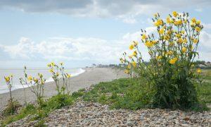 6 Great UK Coastal Destinations