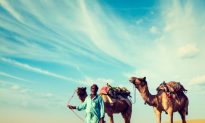 How a Deadly Camel Virus Infects Human Cells
