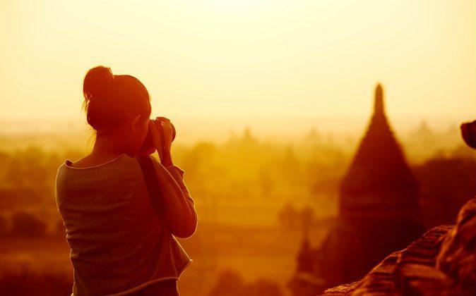 Femele traveler (Shutterstock*)