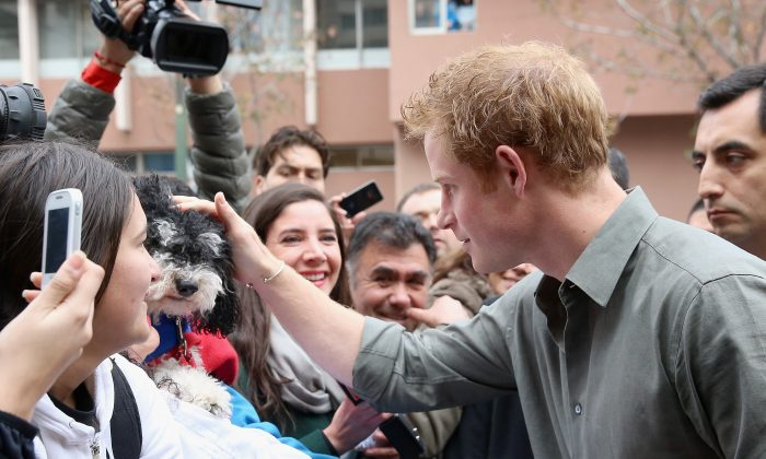 Prince Harry pats a dog as he meets members of the public outside Valpariso Firestation on June 28, 2014 in Valpariso, Chile. Firefighters from Valpariso were involved in dealing with the devastating forest fires that hit the area in April. Prince Harry is on a three day tour of Chile after visiting Brazil. (hris Jackson-Pool/Getty Images)