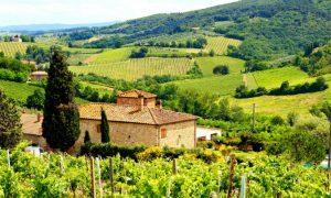 5 Luxury Winery Getaways