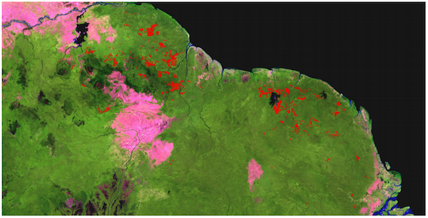 Spatial distribution of forest cleared for mining expansion in the Guiana Shield during the period 2000-2013 (red). Result based on semi-automated analysis of more than 2,500 satellite images (MODIS, Landsat and ALOS PALSAR). Image processing: SarVision. Satelite imagery courtesy of USGS/NASA, JAXA/METI.