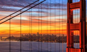 Top 5 Essential Things to Do in San Francisco