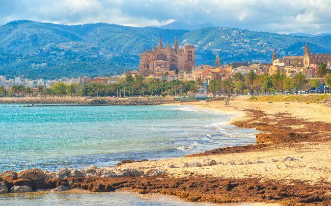 Mallorca (Shutterstock*)