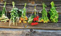 The Natural Medicine Cabinet
