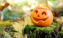 Halloween's Pumpkins Pack a Nutritional Punch