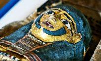 CT Scans 'Unwrap' Secrets of 3 Mummies (+Video)