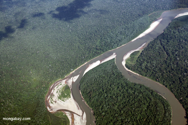 The Amazon Rainforest. Photo by Rhett Butler.