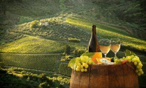 Top 10 Wine Destinations