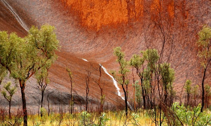 A general view of Uluru is seen as it rains on Nov. 28, 2013 in Uluru-Kata Tjuta National Park, Australia.  (Mark Kolbe/Getty Images)