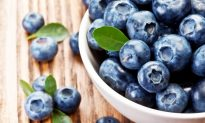 Blueberries: Small Fruit Delivers Big Reward
