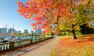 Vancouver on the Cheap